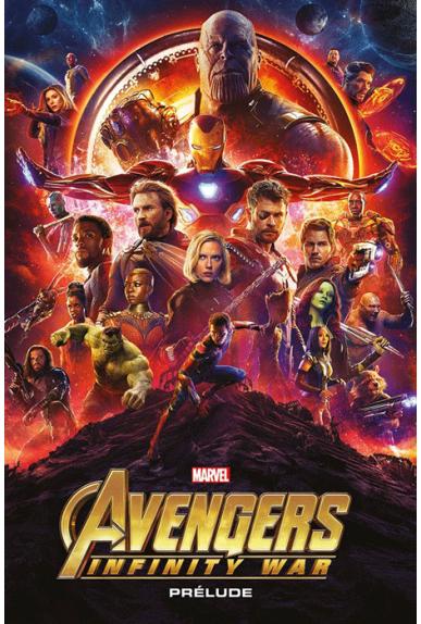 Marvel Cinematic Universe : Avengers Infinity War