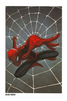 Lithographie Spider-Man par Julian Tedesco