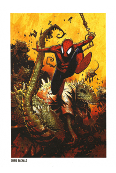 Lithographie Spider-Man par Chris Bachalo