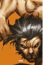 Wolverine, les origines : Printemps du comics